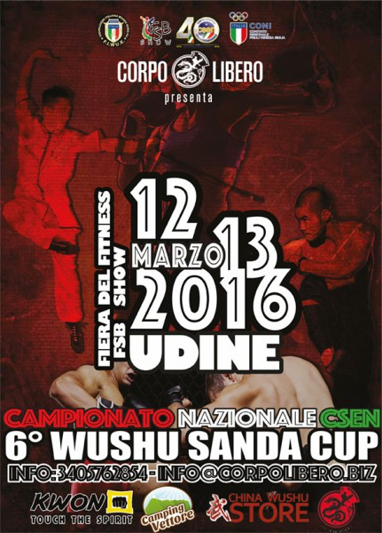 SANDA-CUP2016